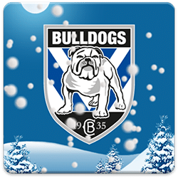 Canterbury Bulldogs Snow Globe