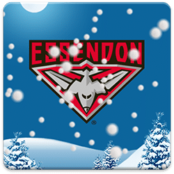 Essendon Snow Globe