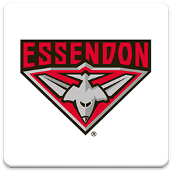 Essendon Spinning Logo