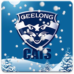 Geelong Snow Globe