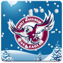 Manly Sea Eagles Snow Globe