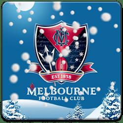 Melbourne FC Snow Globe