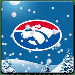 Western Bulldogs Snow Globe